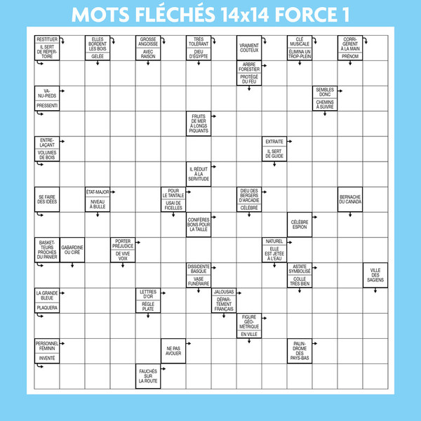 mots fleches force 1